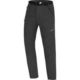 Directalpine Badile 4.0 Pantaloni Uomo, grigio